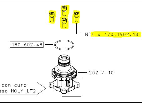 Schraube mit Innensechskant M202 Braglia 170.1902.18